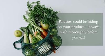 Fresh produce in mesh bag